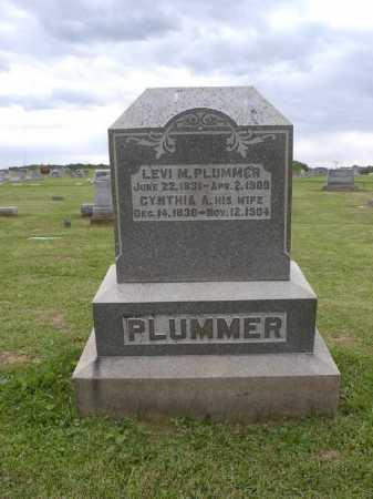 PLUMMER, CYNTHIA A - Adams County, Ohio | CYNTHIA A PLUMMER - Ohio Gravestone Photos