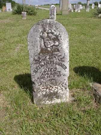 PLUMMER, NATHAN - Adams County, Ohio | NATHAN PLUMMER - Ohio Gravestone Photos