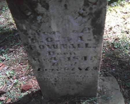 POWNALL, Z. TAYLOR - Adams County, Ohio | Z. TAYLOR POWNALL - Ohio Gravestone Photos