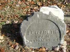 COOK, ELIZABETH - Adams County, Ohio   ELIZABETH COOK - Ohio Gravestone Photos