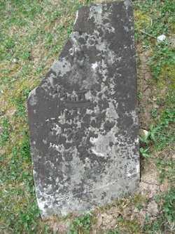 PUNTENNEY, ARAMINTA DAMARIUS - Adams County, Ohio | ARAMINTA DAMARIUS PUNTENNEY - Ohio Gravestone Photos