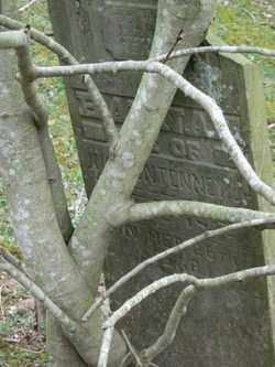 PUNTENNEY, HANNAH - Adams County, Ohio | HANNAH PUNTENNEY - Ohio Gravestone Photos