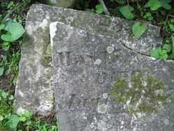 PUNTENNEY, JAMES A. - Adams County, Ohio   JAMES A. PUNTENNEY - Ohio Gravestone Photos