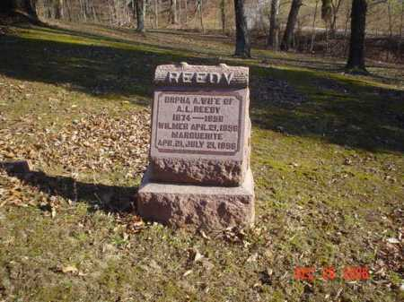 REEDY, WILMER - Adams County, Ohio | WILMER REEDY - Ohio Gravestone Photos