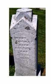 REIGHLEY, HENRY - Adams County, Ohio | HENRY REIGHLEY - Ohio Gravestone Photos