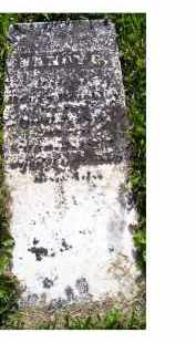 REIGHLEY, NANCY G. - Adams County, Ohio   NANCY G. REIGHLEY - Ohio Gravestone Photos