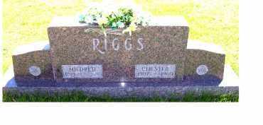 RIGGS, MILDRED - Adams County, Ohio | MILDRED RIGGS - Ohio Gravestone Photos