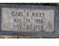 RILEY, CARL F. - Adams County, Ohio | CARL F. RILEY - Ohio Gravestone Photos
