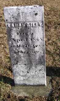 RILEY, SARAH - Adams County, Ohio   SARAH RILEY - Ohio Gravestone Photos