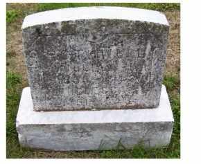 ROTHWELL, WILLIAM H. - Adams County, Ohio | WILLIAM H. ROTHWELL - Ohio Gravestone Photos