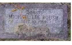ROUSH, MICHAEL LEE - Adams County, Ohio   MICHAEL LEE ROUSH - Ohio Gravestone Photos