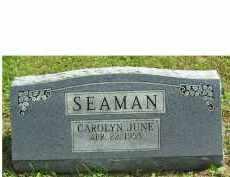 SEAMAN, CAROLYN JUNE - Adams County, Ohio   CAROLYN JUNE SEAMAN - Ohio Gravestone Photos