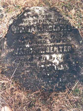 SENTER, WILLIAM HENRY - Adams County, Ohio | WILLIAM HENRY SENTER - Ohio Gravestone Photos