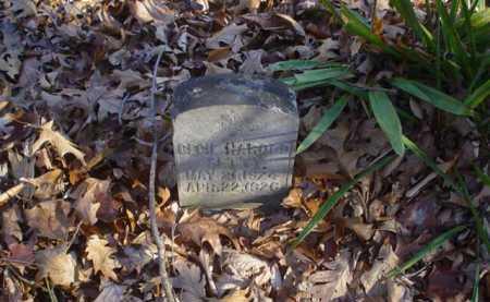 SETTY, CECIL HAROLD - Adams County, Ohio | CECIL HAROLD SETTY - Ohio Gravestone Photos