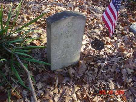 SETTY, JESSE V. - Adams County, Ohio | JESSE V. SETTY - Ohio Gravestone Photos