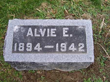 SHOEMAKER, ALVIE E. - Adams County, Ohio | ALVIE E. SHOEMAKER - Ohio Gravestone Photos