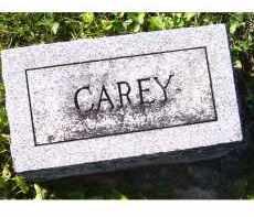 SININGER, CAREY - Adams County, Ohio | CAREY SININGER - Ohio Gravestone Photos