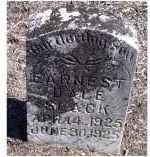 SLACK, EARNEST DALE - Adams County, Ohio   EARNEST DALE SLACK - Ohio Gravestone Photos