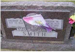 SMITH, DELMAR A. - Adams County, Ohio | DELMAR A. SMITH - Ohio Gravestone Photos