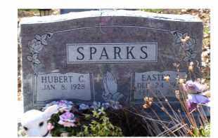 SPARKS, HUBERT C - Adams County, Ohio | HUBERT C SPARKS - Ohio Gravestone Photos