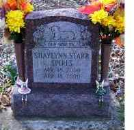 SPIRES, SHAYLYNN STARR - Adams County, Ohio   SHAYLYNN STARR SPIRES - Ohio Gravestone Photos