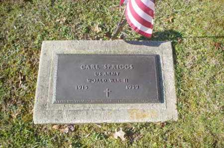 SPRIGGS, CARL - Adams County, Ohio | CARL SPRIGGS - Ohio Gravestone Photos