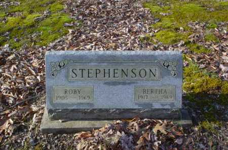 STEPHENSON, BERTHA - Adams County, Ohio | BERTHA STEPHENSON - Ohio Gravestone Photos