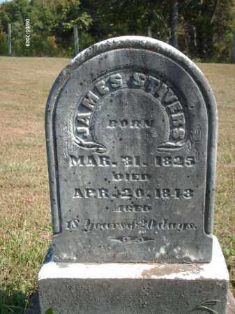 STIVERS, JAMES - Adams County, Ohio | JAMES STIVERS - Ohio Gravestone Photos