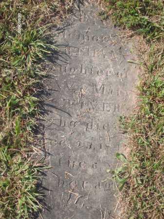 STIVERS, MARTHA ANN - Adams County, Ohio | MARTHA ANN STIVERS - Ohio Gravestone Photos