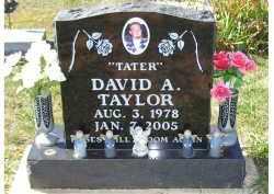 TAYLOR, DAVID A. - Adams County, Ohio | DAVID A. TAYLOR - Ohio Gravestone Photos