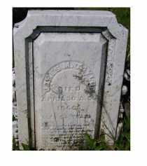 TAYLOR, JAMES M. - Adams County, Ohio | JAMES M. TAYLOR - Ohio Gravestone Photos