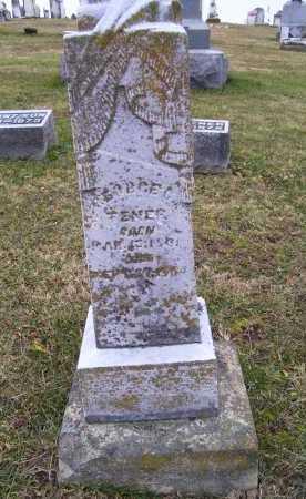 TENER, GEORGE C. - Adams County, Ohio | GEORGE C. TENER - Ohio Gravestone Photos