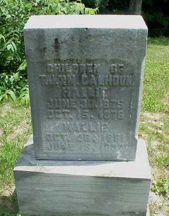 TEST, DELETE - Adams County, Ohio | DELETE TEST - Ohio Gravestone Photos