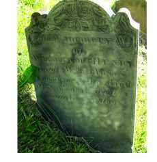 THOMPSON, WILLIAM HENRY - Adams County, Ohio   WILLIAM HENRY THOMPSON - Ohio Gravestone Photos