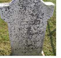 TRICHLER, HARRIET - Adams County, Ohio | HARRIET TRICHLER - Ohio Gravestone Photos