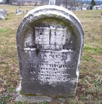 TRICHLER, JANE - Adams County, Ohio | JANE TRICHLER - Ohio Gravestone Photos