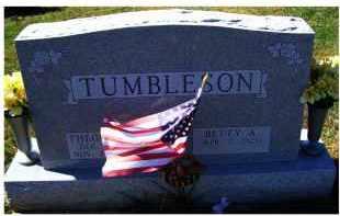 TUMBLESON, THEODORE - Adams County, Ohio | THEODORE TUMBLESON - Ohio Gravestone Photos