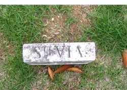 UNKNOWN, SILVIA - Adams County, Ohio   SILVIA UNKNOWN - Ohio Gravestone Photos