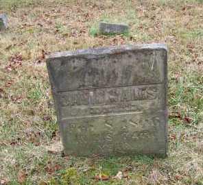 WALES, DAVID - Adams County, Ohio | DAVID WALES - Ohio Gravestone Photos