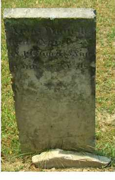 WAMSLEY, AMOS - Adams County, Ohio   AMOS WAMSLEY - Ohio Gravestone Photos