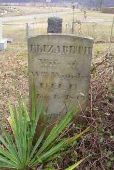 WAMSLEY, ELIZABETH - Adams County, Ohio | ELIZABETH WAMSLEY - Ohio Gravestone Photos
