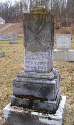 WAMSLEY, ELIZABETH A. - Adams County, Ohio   ELIZABETH A. WAMSLEY - Ohio Gravestone Photos