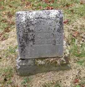 WAMSLEY, HARVEY A. - Adams County, Ohio | HARVEY A. WAMSLEY - Ohio Gravestone Photos