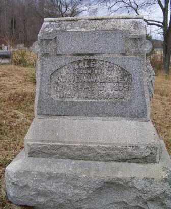 WAMSLEY, HARLEY - Adams County, Ohio | HARLEY WAMSLEY - Ohio Gravestone Photos