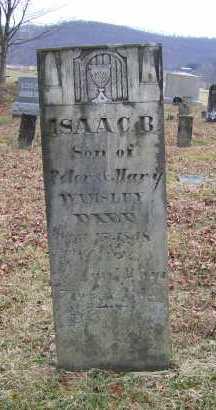 WAMSLEY, ISAAC B. - Adams County, Ohio | ISAAC B. WAMSLEY - Ohio Gravestone Photos