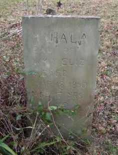 WAMSLEY, MAHALA - Adams County, Ohio   MAHALA WAMSLEY - Ohio Gravestone Photos