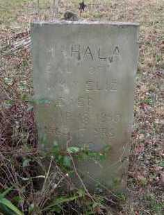 WAMSLEY, MAHALA - Adams County, Ohio | MAHALA WAMSLEY - Ohio Gravestone Photos