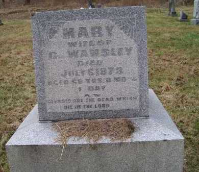 WAMSLEY, MARY - Adams County, Ohio | MARY WAMSLEY - Ohio Gravestone Photos