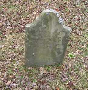 WAMSLEY, NANCY ANN - Adams County, Ohio | NANCY ANN WAMSLEY - Ohio Gravestone Photos