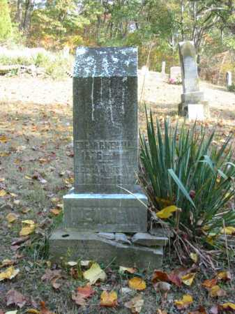 WAMSLEY NEWMAN, REBECCA JANE - Adams County, Ohio | REBECCA JANE WAMSLEY NEWMAN - Ohio Gravestone Photos
